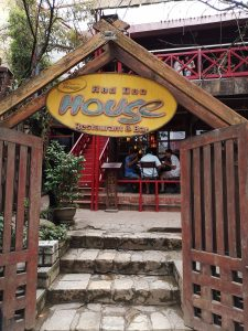 Red Dao House