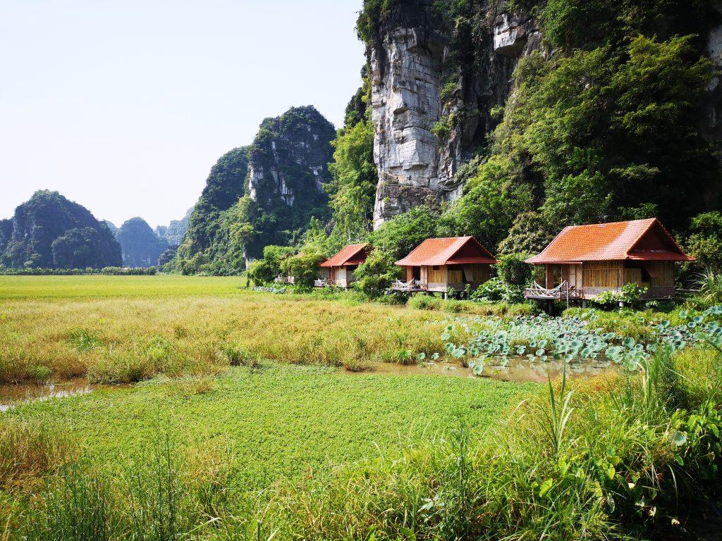 Lotus-Field-Homestay