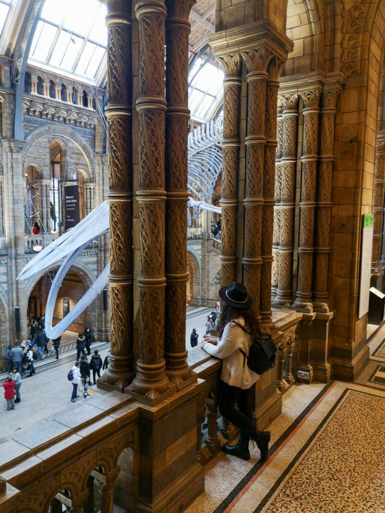 History-Natural-Museum-Cosa-fare-gratis-a-Londra