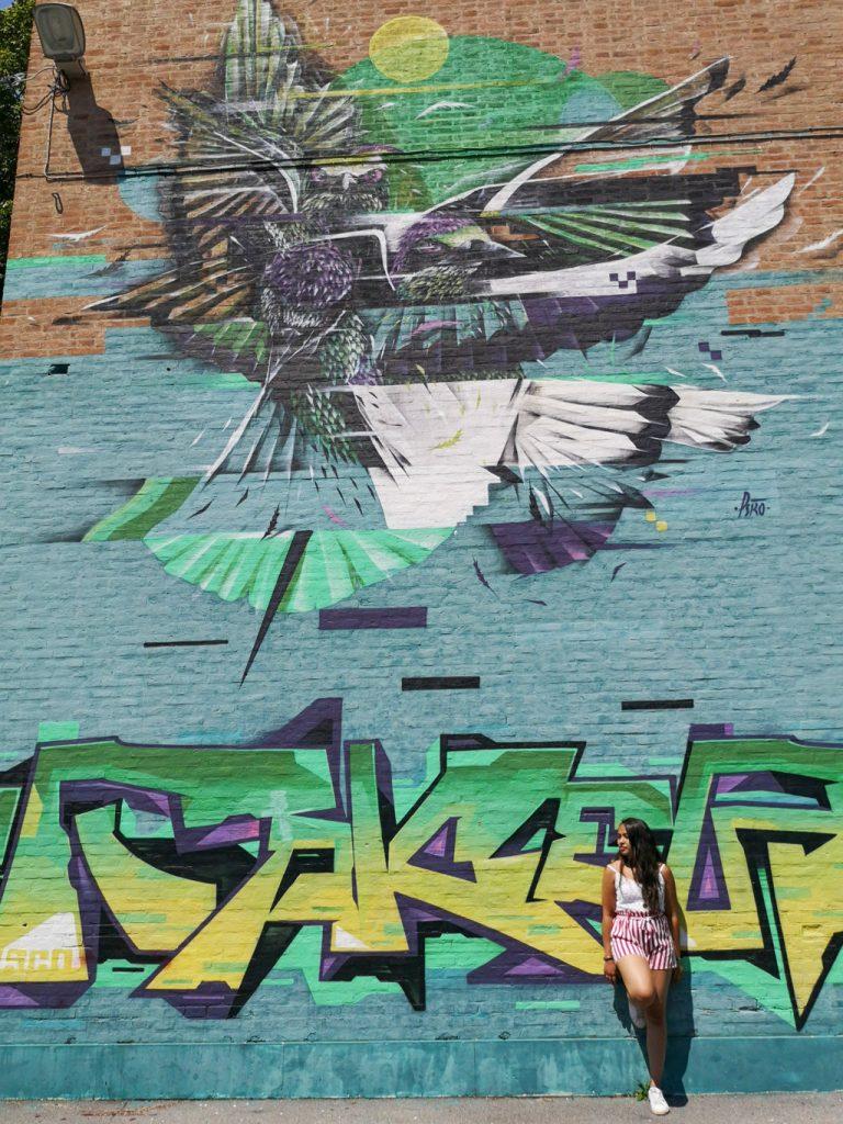Street-Art-Ferrara-in-un-giorno